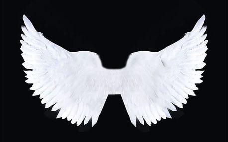 Andělská třpytivá křídla