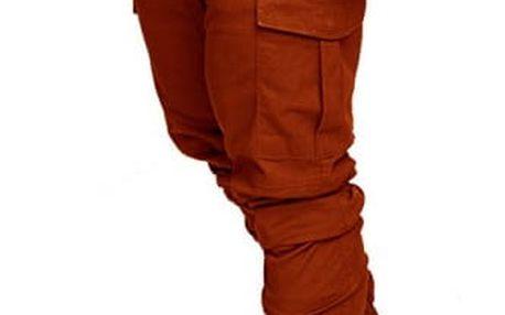 Pánské stylové kalhoty Amadeo - 10 variant