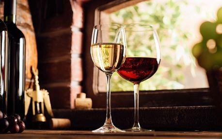 Vinařský pobyt s hostinou a koštováním