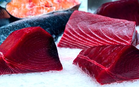 Filet z čerstvého tuňáka žlutoploutvého