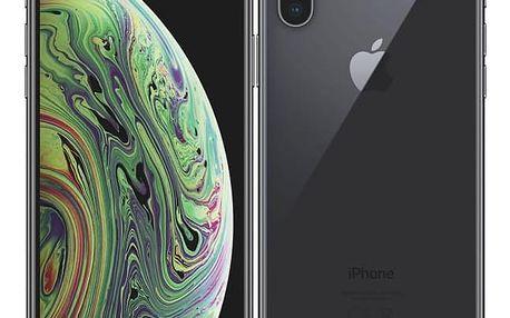 Apple iPhone Xs 64 GB - space grey (MT9E2CN/A)