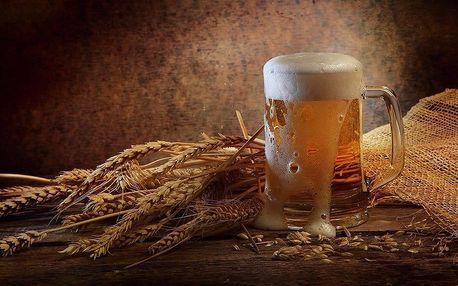Exkurze pivovaru Victor s ochutnávkou pro 2