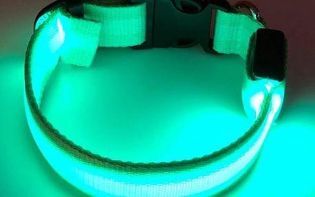 Nabíjecí svíticí obojek Reedog v různých barvách a velikostech