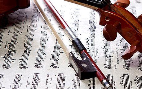 Vstupenka pro 1 osobu na exkluzivní koncerty v srdci Prahy - nechte se ve Smetanově síni.