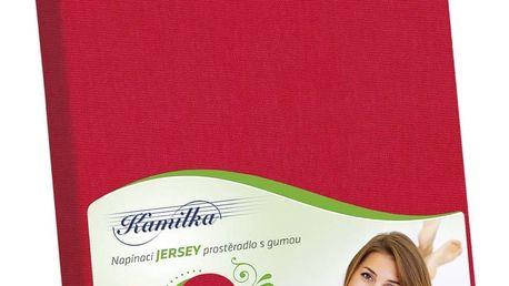 Bellatex Jersey prostěradlo Kamilka červená, 140 x 200 cm
