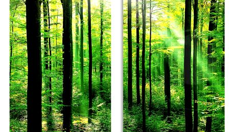 WENKO Ochranné skleněné panely FOREST na sporák – 2 ks
