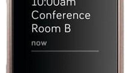 Fitbit Charge 3 speciální edice (NFC) - Lavender Woven (FB410RGLV-EU)
