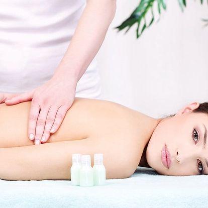 Ájurvédská 150min. masáž Abhyanga pro celé tělo