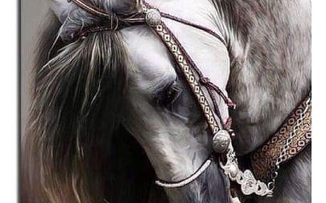 3D kamínkový obraz DIY (25 x 30 cm) - Kůň