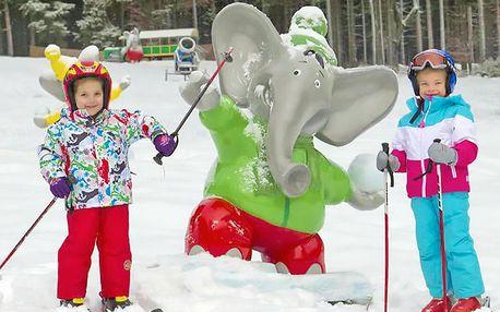 Lipno s rodinou v penzionu je kousek od skiareálů Frymburk a Lipno s polopenzí, welcome drinkem a kartou slev