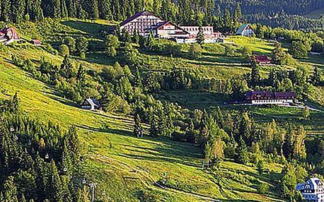 Pobyt pro 2 osoby ve 3* hotelu Vladimír s polopenzí. Bohatá polopenze, džbánek vína, káva.