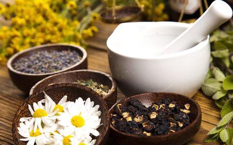 Kurz bylinkaření: jak využít léčivou moc přírody