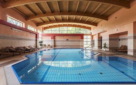 Kudowa – Zdrój, hotel Kudowa u českých hranic s wellness a polopenzí
