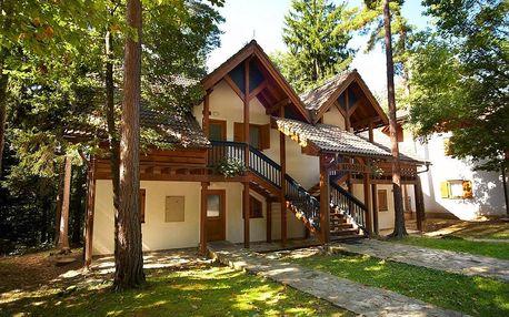 Lyžování Slovinsko, Pohorje - Vily Terme Zreče s polopenzí - zimní zájezd