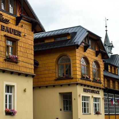 Depandance Hotelu Bauer pro nenáročné s wellness a polopenzí