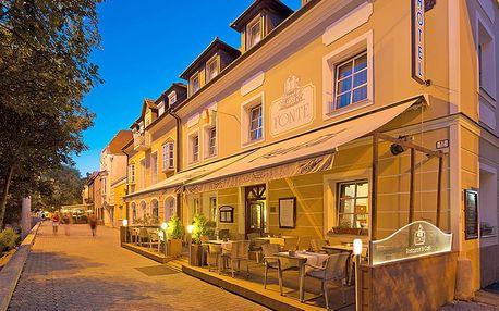 Maďarský Győr v příjemném hotelu méně než 1 km od lázní se snídaní – i varianty se vstupem do termálů