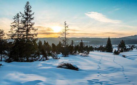 Zimní i jarní Šumava na 3–6 dní s polopenzí pro 2