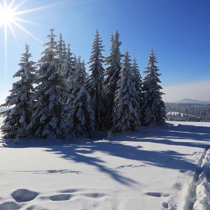 Zima a jaro na Šumavě: 2 či 3 dny s polopenzí