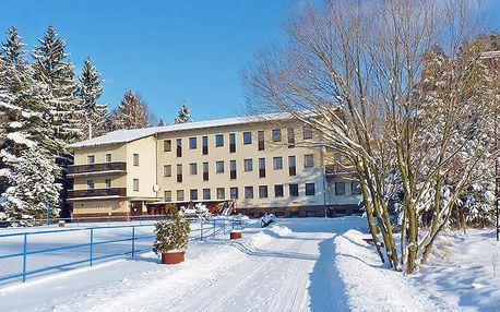 Východní Čechy v hotelu kousek od unikátu Toulovcovy maštale s wellness, polopenzí + 2 děti do 11,9 zdarma