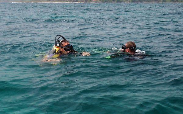 Enjoy diving