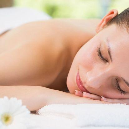 Blahodárná masáž dle výběru: medová či holistická