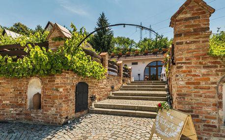 Neomezená konzumace vína v rodinném Vinařství Krýsa na jižní Moravě