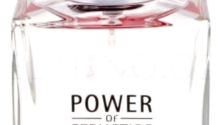 Antonio Banderas Power of Seduction 100 ml toaletní voda pro muže