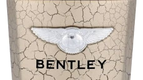 Bentley Infinite Rush 100 ml toaletní voda pro muže