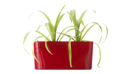 G21 Combi mini Samozavlažovací květináč červený 40cm