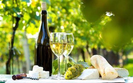 Pálava: penzion s neomezenou konzumací vína