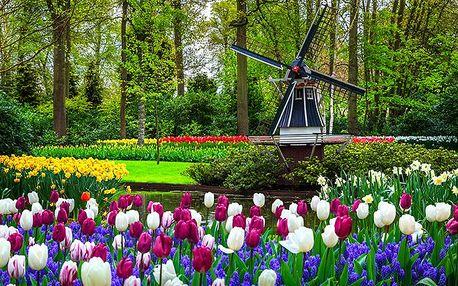 4denní zájezd pro 1 do Amsterdamu, Alkmaaru, Volendamu i Zaanse Schans