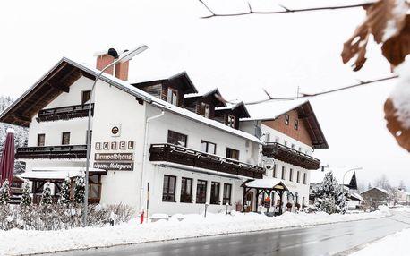 Hotel Lesní dům v Bavorském lese se saunou blízko lyžařských areálů