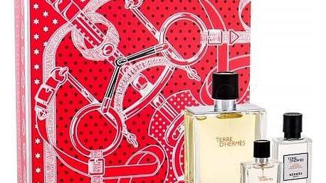 Hermes Terre D´Hermès dárková kazeta pro muže toaletní voda 100 ml + toaletní voda 12,5 ml + voda po holení 40 ml