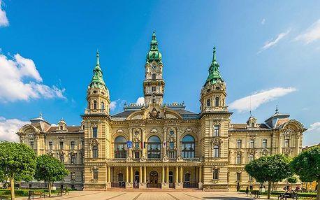 Lázně Győr ve 4* hotelu s wellness neomezeně a polopenzí + varianty se vstupem do termálů na celý den