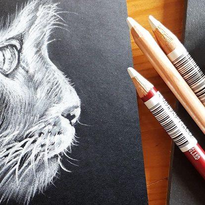 2denní výtvarný kurz, černobílá inverzní kresba