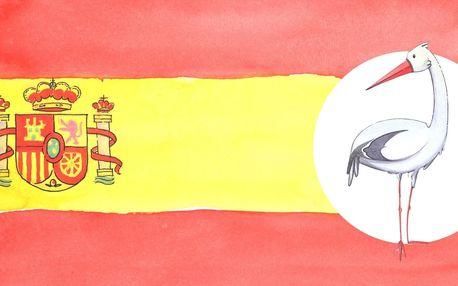 Roční online kurz španělštiny nebo 4 jazyků