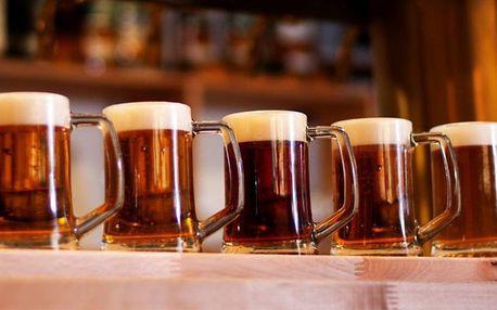 Pivní lišta: Degustace 5x 0,2 l vybraných piv