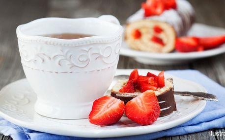Káva a dort včetně vstupu do Průhonického parku