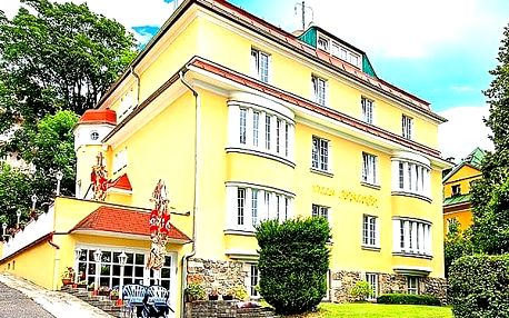 Wellness pobyt pro dva s polopenzí v hotelu Villa Skalník Mariánské lázně, wellness procedury.
