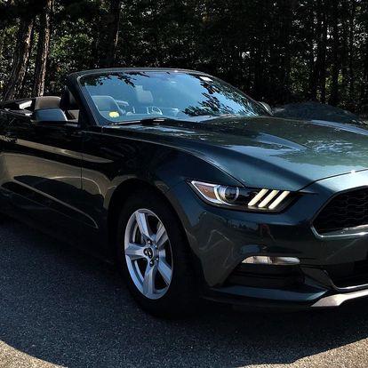 Zapůjčení Fordu Mustang kabrio na den i víkend
