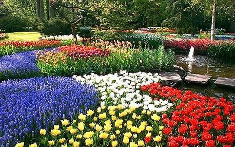 Zájezd do Amsterdamu pro jednoho s ubytováním,největší rozkvetlý park v Evropě Keukenhof.