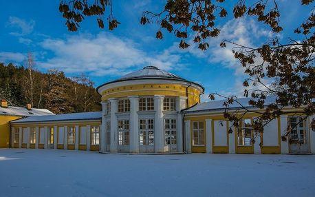 Villa Skalník v Mariánských Lázních s polopenzí a wellness procedurami