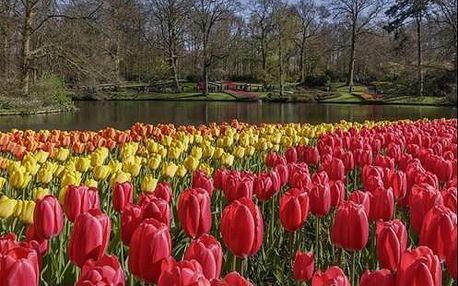 Návštěva Bruselu, Amsterdamu a květinového parku Keukenhof s ubytováním v hotelu
