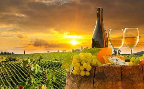 Znojmo: vinařský pobyt se slevou do lázní