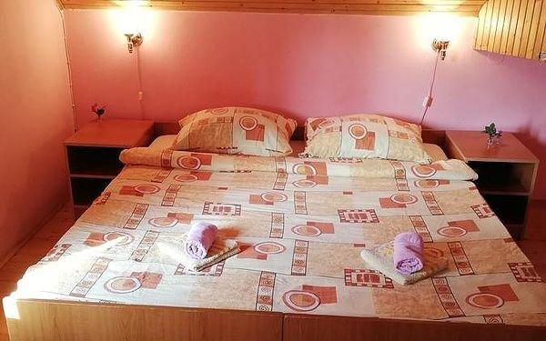 Dvoulůžkový pokoj s manželskou postelí / oddělenými postelemi5