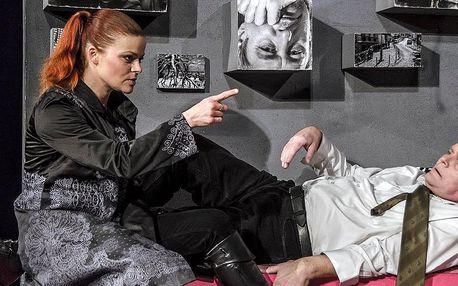 Vstupenka na divadelní komedii s Igorem Barešem