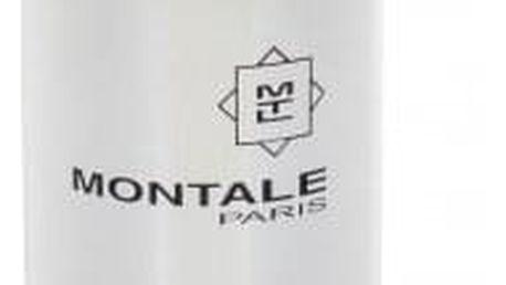 Montale Paris Fruits Of The Musk 100 ml parfémovaná voda unisex