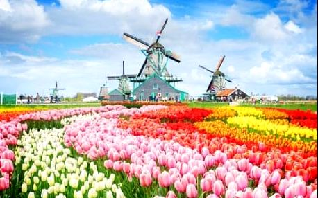 6 denní expedice Holandskem – Amsterdam, Keukenhof, Delft, Alkmaar