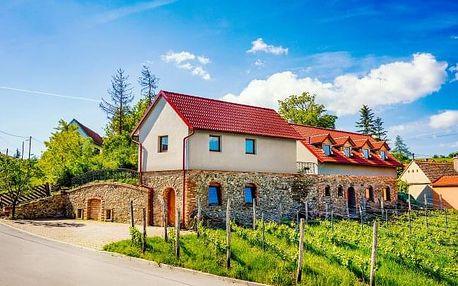 Vinařský pobyt u Znojma ve Vinařství Lintner s degustací a bohatým občerstvením