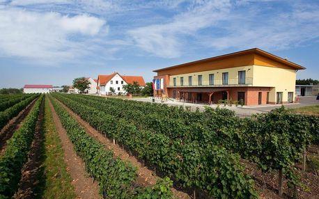 Velké Bílovice: Penzion s výhledem na malebné vinohrady
